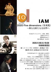 IAM2020-11